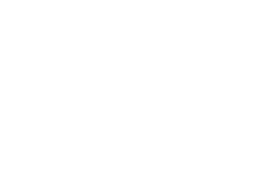Paxton Partners